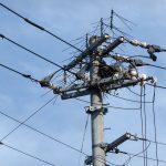 松本ファーム付近の電柱にカラスの巣の写真1