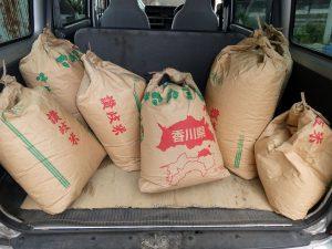 2019年新米の屑米6袋の写真