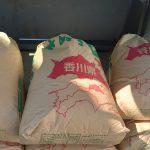 2021年新米 香川県 さぬき米